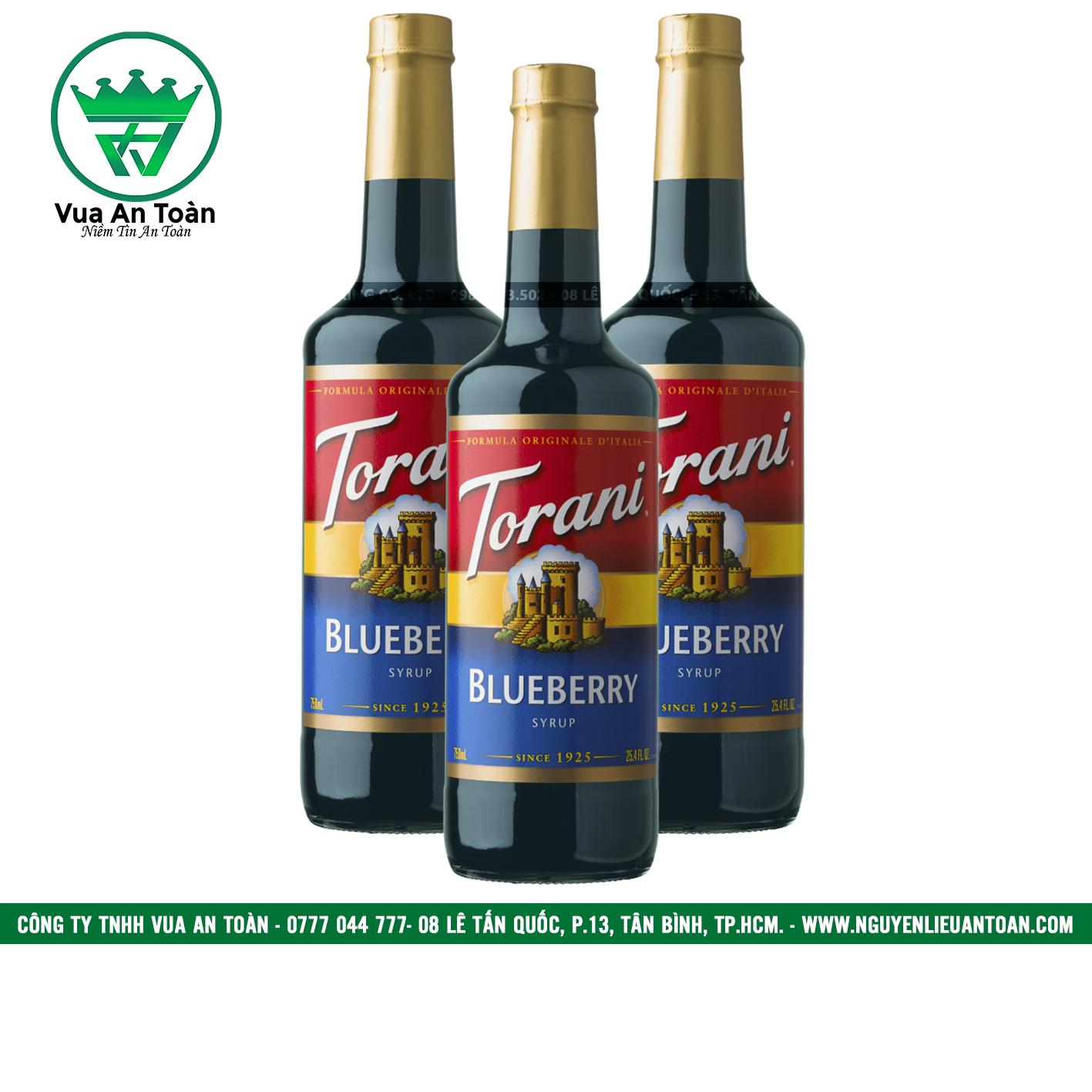 Torani Việt Quất - Blueberry Syrup